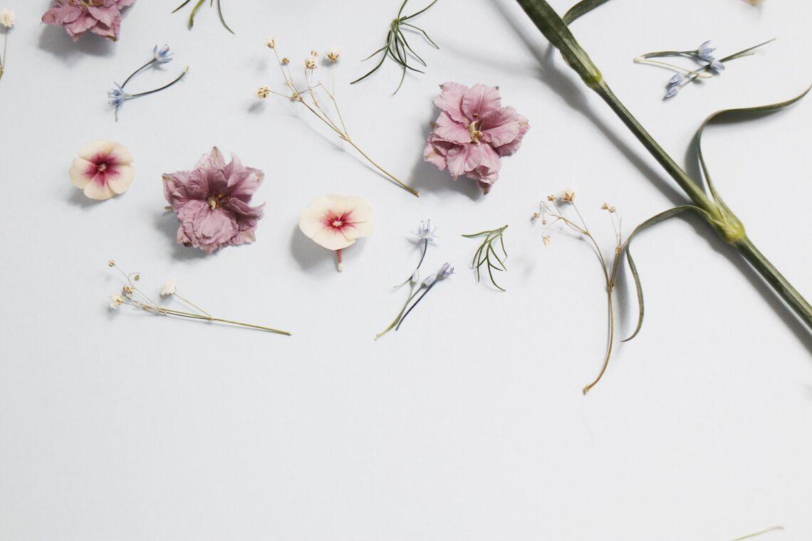 dei fiori rosa e bianchi