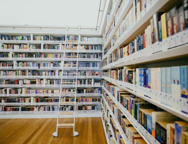 scaffali bianchi pieni di libri