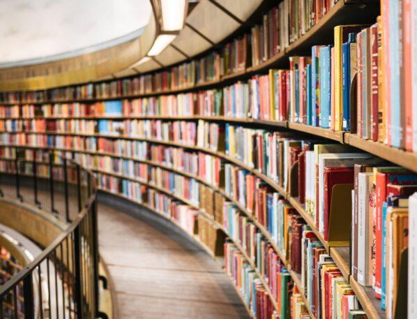 scaffali pieni di libri