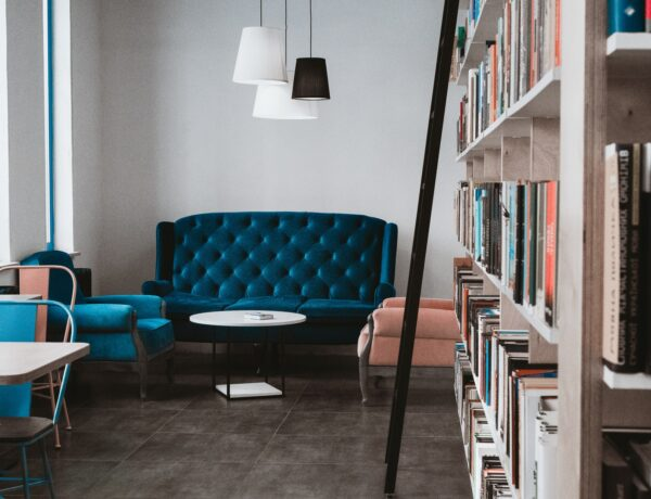 un salotto pieno di libri
